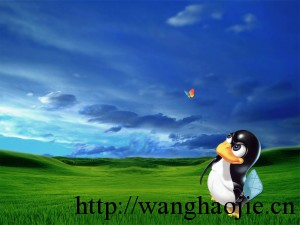 Linux vs Windows 壁纸11